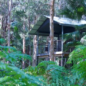 Hotelbilleder: Treehouse Retreat at Diamond Waters, Dunbogan