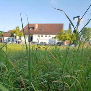 Hotel Pictures: Hotel Rosenbach, Reutlingen