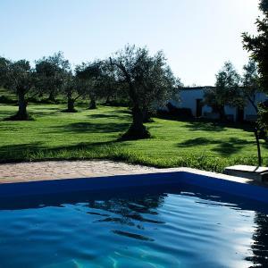 Hotel Pictures: Casa Rural Huerta del Pirata, Fuente de Cantos