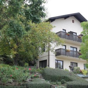 Hotel Pictures: Aurelius Pension, Baden