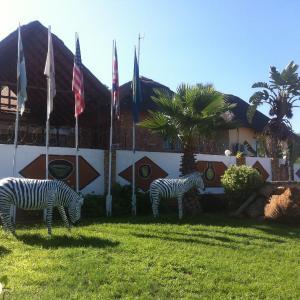 Hotel Pictures: Maeto Lodge, Mahalapye