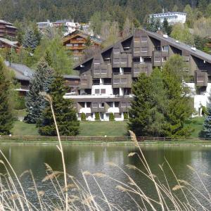 Hotel Pictures: Apartment Belle-Rive, Crans-Montana