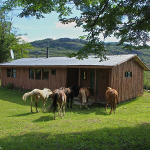 Фотографии отеля: Cabañas Patagoniaventura, Puerto Bertrand