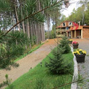 Hotel Pictures: La maison sous les arbres, Saint Roch de Mekinac