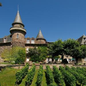 Hotel Pictures: Hôtel Château de Castel Novel - Les Collectionneurs, Varetz