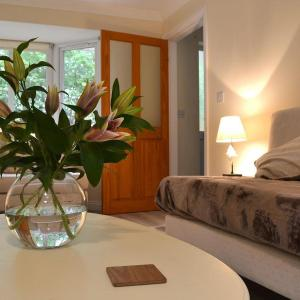 Hotel Pictures: Plas Cottage, Rhyl