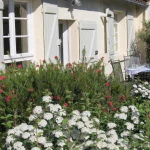 Hotel Pictures: The Cottage, Toulouse