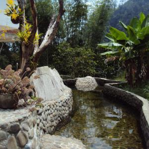 Hotel Pictures: Hostel Casa Batara, Pance