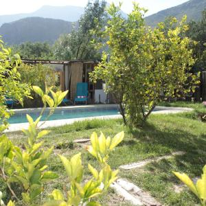 Фотографии отеля: Organica Lodge Spa, Vicuña