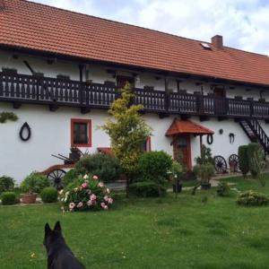 Hotel Pictures: Chalupa v Radosticich, Lovosice