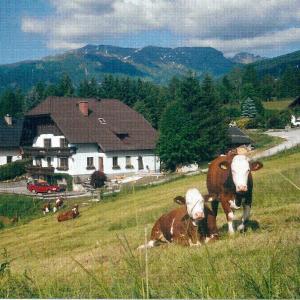 Hotellikuvia: Apartment Prodinger, Mariapfarr