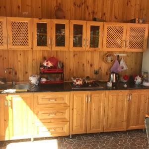 酒店图片: Qabala Vendam Villa, Vǝndam