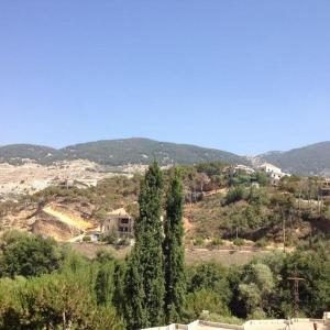 Fotos de l'hotel: Barouk Chouf 'The View', Al Bārūk