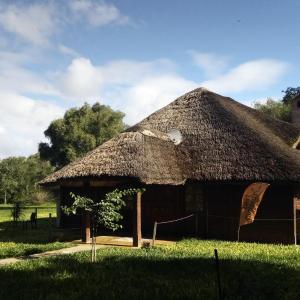Hotellbilder: Las Curiosas, Aviá Terai