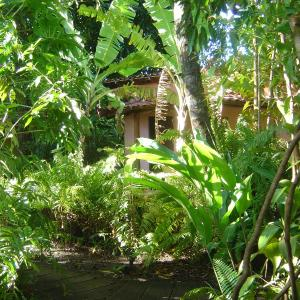 Hotel Pictures: Zimbo Tropical, Aratuba Beach