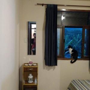 Hotel Pictures: Casa da Cami!, Lumiar