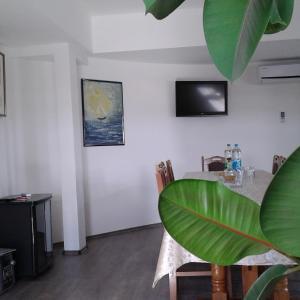 Hotel Pictures: Apartment Setaliste, Brčko