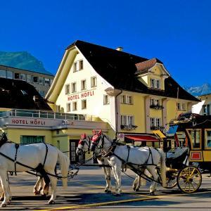 Hotel Pictures: Hotel Höfli, Altdorf