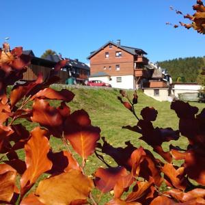 Hotel Pictures: Ferienwohnung Elisabeth, Klingenthal