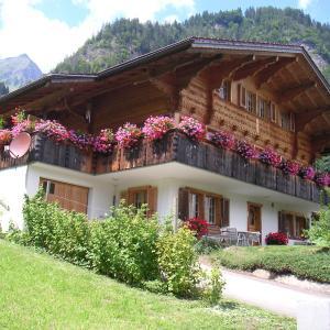 Hotel Pictures: Ferienwohnung Suter, Wengi bei Frutigen