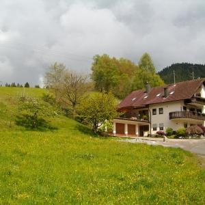 Hotelbilleder: Ferienwohnung Am Sulzbächle, Bad Rippoldsau-Schapbach