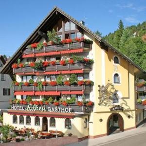 Hotel Pictures: Hotel Restaurant Falken, Baiersbronn