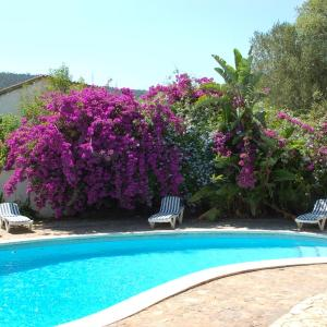 Hotel Pictures: Pool Guest House, Vall-Llobrega