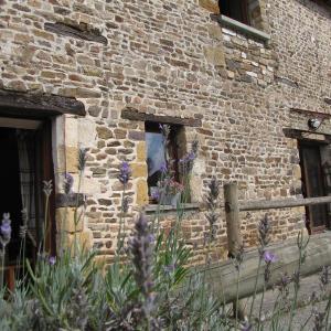 Hotel Pictures: L'ECURIE GITE, La Pommeraye
