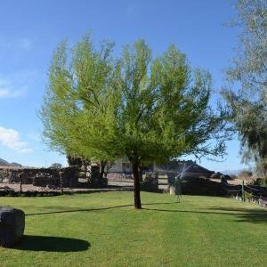 Zdjęcia hotelu: La Arenosa, Cafayate