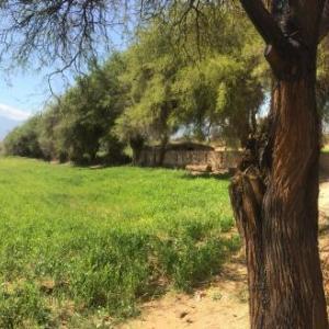 Fotografie hotelů: Hospedaje Guadalupe, San Carlos