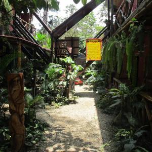 Hotel Pictures: Hostal Mamacucha, Montañita