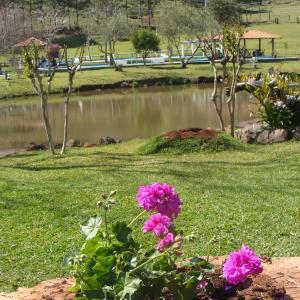 Hotel Pictures: Hotel Fazenda Quinto Rancho, Marcelino Ramos