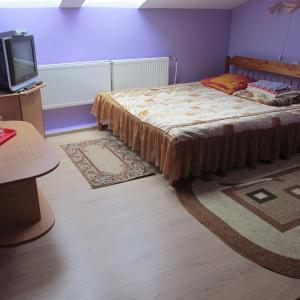 Hotel Pictures: Gostinitsa biatlonnyi komplieks Selets, Novogrudok