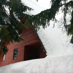 Hotel Pictures: Vacation Home Vlasic, Gornja Šišava