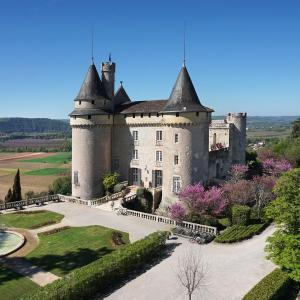 Hotel Pictures: Château de Mercuès, Mercuès