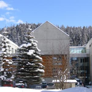Hotel Pictures: All In One Hotel - Inn Lodge / Swiss Lodge, Celerina