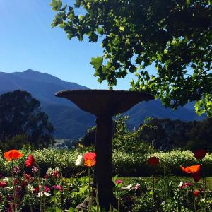 Hotelbilder: Birches Luxury Spa Chalets, Mount Beauty