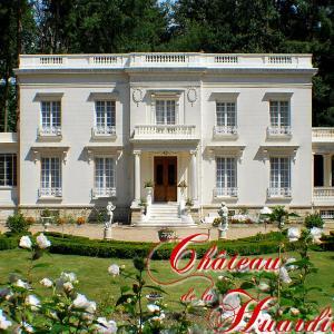 Hotel Pictures: Chateau de la Huardiere, Sully-sur-Loire