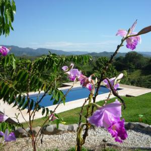 Hotellbilder: Villa Pura Vida, Montezuma