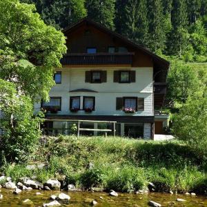 Hotel Pictures: Dachwohnung-Morgensonne, Schönmünzach