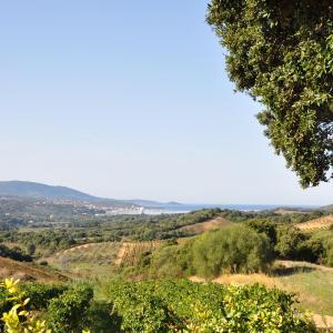 Hotel Pictures: Bergerie Dans Vignoble, Fozzano