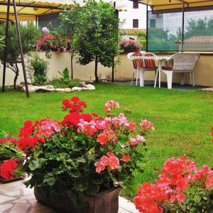 Fotografie hotelů: Apartment Fazana 7260a, Fažana