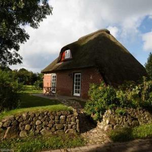Hotel Pictures: Das Bauernhaus, Borgsum