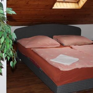 Hotel Pictures: Penzion U Zlatého selátka, Kladno