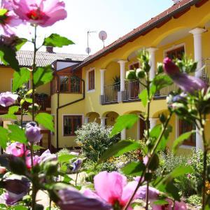 酒店图片: Weingut - Gästezimmer zum Schwalbennest, Herrnbaumgarten