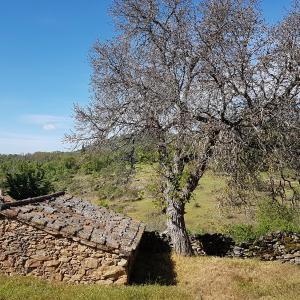 Hotel Pictures: La Posada de Horcajuelo, Horcajuelo de la Sierra