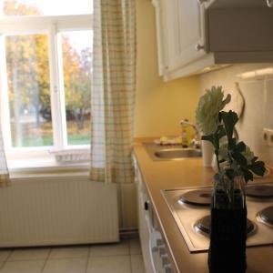 Hotelbilleder: Gutshaus, Neuburg