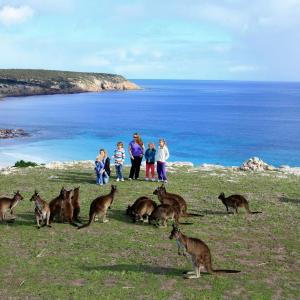 Hotellbilder: Waves & Wildlife Cottages Kangaroo Island, Stokes Bay