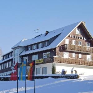 Hotel Pictures: Hotel Diana, Feldberg