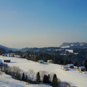 Hotelbilleder: Appartment Bodensee, Alberschwende